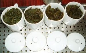 同じ種類の茶葉でも、製法が違えば味は大違い!